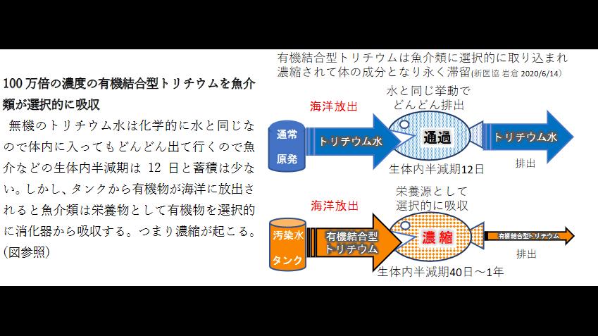iwakura_fig1.png