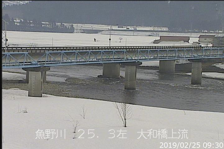 魚野川大和橋上流左岸ライブカメラ2019/02/25